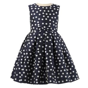 Polka Dot Damask Dress