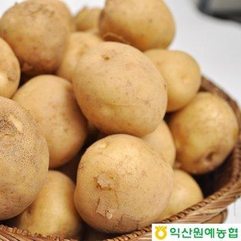 [익산원예농협][익산원예농협/산지직송] 2017년 하우스 수미감자 3kg(특~상)