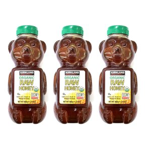 커클랜드 유기농 꿀 허니 680g X 3개 세트 KIRKLAND SIGNATURE RAW ORGANIC HONEY BEAR