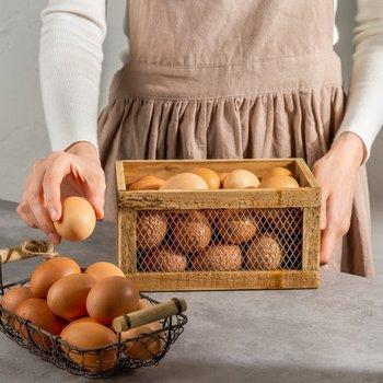 금주의 친환경 행사(달걀/사과/잡곡)