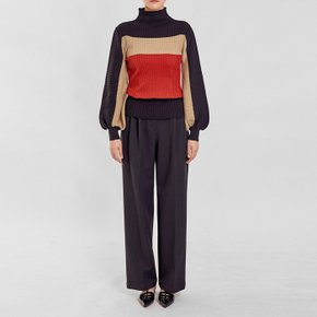 / colorblock ribbed turtleneck(2 colors)