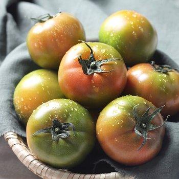 [권영욱 생산자님]대저토마토 못난이 2.5kg
