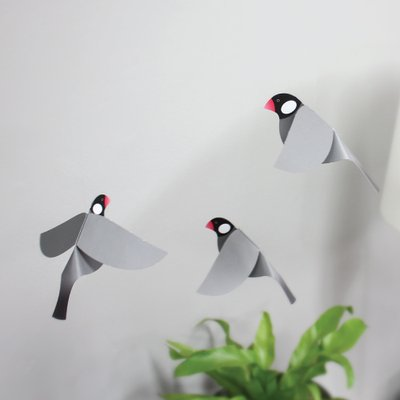 문조 모빌 (java sparrow mobile)