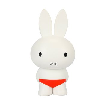 DICK BRUNA S3 MIFFY PLAYING IN WATER