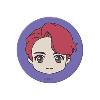 SD Pop Sockets_정국