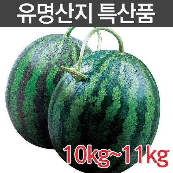 [국내산] 고당도 수박 10kg이상