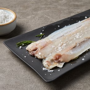 Anheung Eel_Marie (Extra-large, 260g or more)