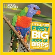 National Geographic: Little Kids First Big Book of Birds (Hardcover)  - National Geographic Little Kids First Big Books