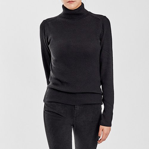 / standard ribbed turtleneck