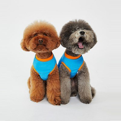 Best Friend T-shirts(Blue)