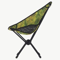 Chair One Palm Leaves