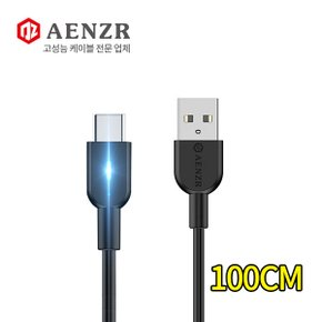 AENZR USB to Type-C LED 고속충전 숏 데이터케이블 3A 100CM